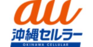 (特別協力)沖縄地区